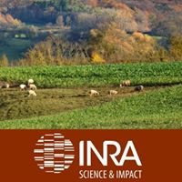 Centre Inra Grand Est - Nancy