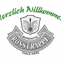 Akzent Berghotel Rosstrappe in Thale