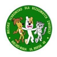 Reksio Schronisko dla bezdomnych zwierząt Bielsko-Biała - wolontariat