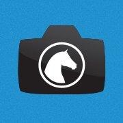 Horse Photo Experience