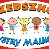 Bystry Maluch - Niepubliczne Przedszkole i Żłobek o profilu artystycznym