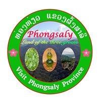 Phongsaly Land of The Three Greens