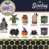 Tracy Schoonover Independent Scentsy Conultant