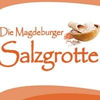 Die Magdeburger Salzgrotte