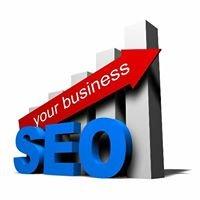 Digital Marketing - SEO Services