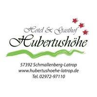 Hotel & Gasthof Hubertushöhe in Schmallenberg