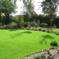 Projektowanie ogrodów w Dębicy