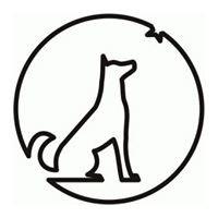 Świetlny Pies - fotografia architektury