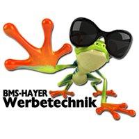 BMS-Hayer