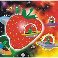 BIO Erdbeergarten Muschk