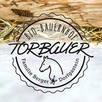 Bio Bauernhof Torbauer im Salzburger Land
