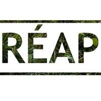RÉAP - Regroupement des étudiantes et étudiants en Architecture de Paysage
