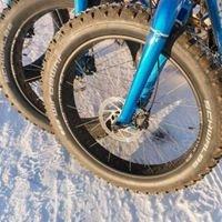 Borealis Bike Tours Unlimited