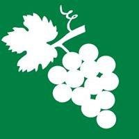 Bioland-Wein