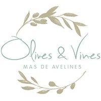 Olives & Vines