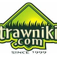 Trawniki.com