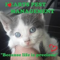 Hearts Pest Management