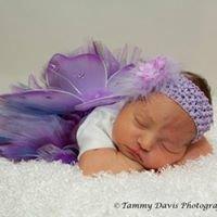 Tammy Davis Photography