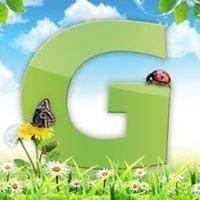 Geiseltal.info