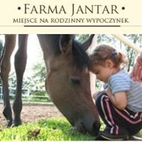 Farma Jantar
