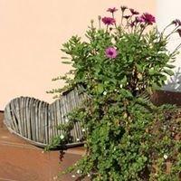 Artykuły ogrodnicze Dolomit