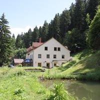 Fasten und Wohlfühlhotel Quelle / Thüringens 1. Fastenhotel