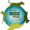 Greendog Rescue Project