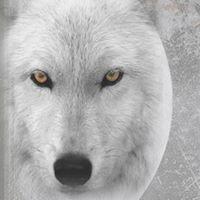 Wolf Sanctum Wildstones