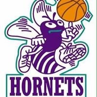 Healesville Hornets Basketball Club