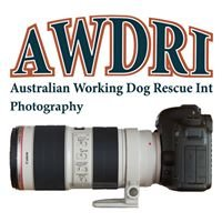 AWDRI Photography