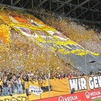 Mein Block - K-Block im Rudolf-Harbig-Stadion Dresden