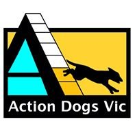 Dogs in Motion Canine Rehabilitation & Physiotherapy