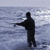 Fiske o Sportboden