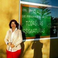 Academia de Idiomas Leo