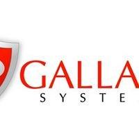 Gallant Systems, LLC