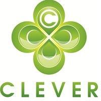 "Бизнес-инкубатор ""Clever"""