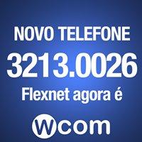 Flexnet Informática