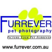 Furrever Pet Photography