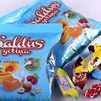 Saldus Gotiņa