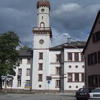 Litauisches Gymnasium Hüttenfeld
