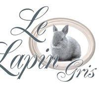 LE LAPIN GRIS