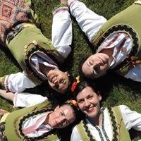 Dilmana Folk Dance Group Copenhagen