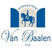 Dressuurstal Van Baalen