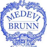 Medevi Brunn