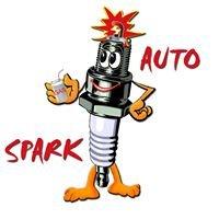 Sparkauto - Electrician auto, Schimb ulei