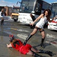 Rambergs Eventbyrå- Partybuss, utdrikningslag, stripping