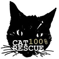 Cat Rescue cafe