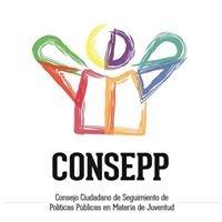 Consepp - Consejo Ciudadano de Juventud del Imjuve