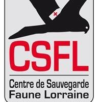 Association CSFL: Centre de Sauvegarde de la Faune Lorraine