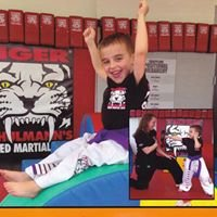 Tiger Schulmann's Martial Arts Englewood